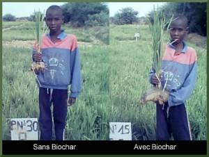biochar_fr6